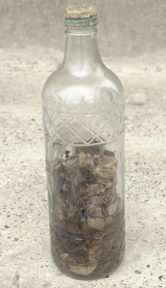 Botella curada, base de la medicina tradicional guapireña
